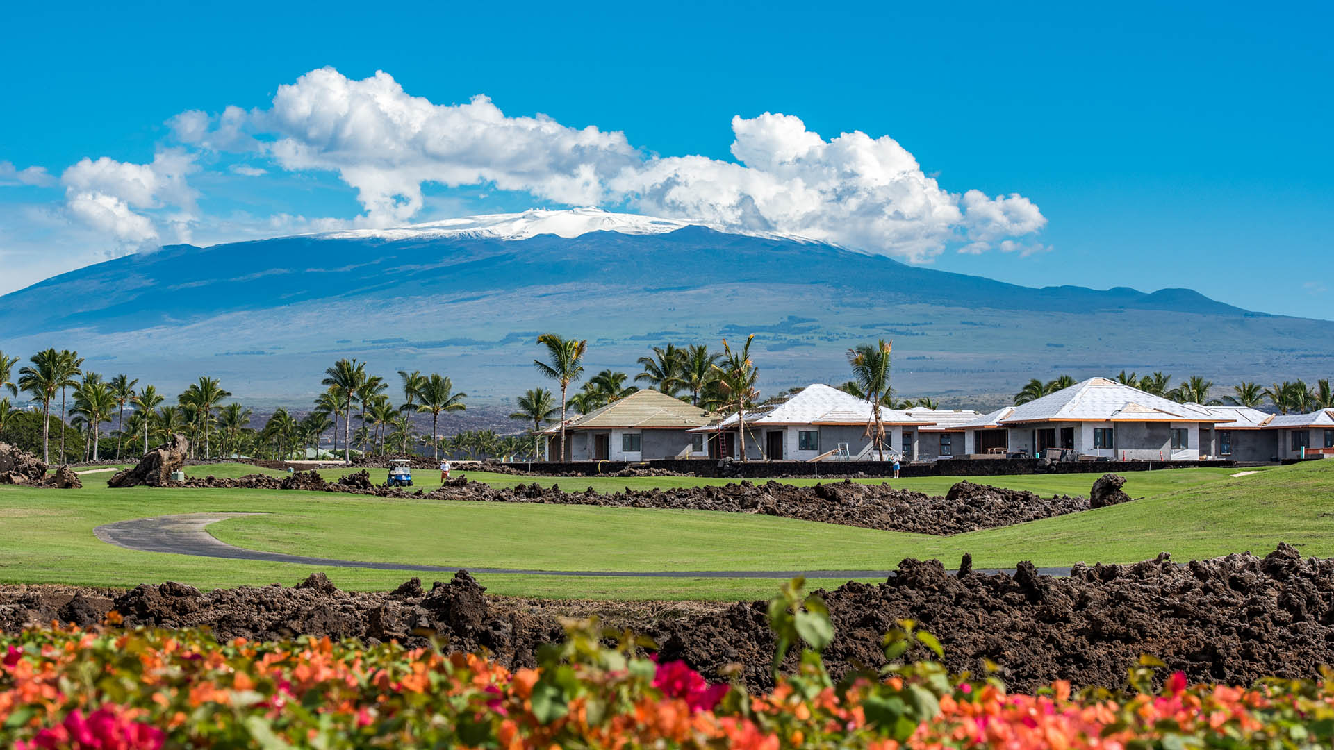 A view of snow capped Mauna Kea from Laule'a.
