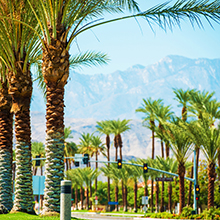 Photograph of Palm Springs sliding into view.